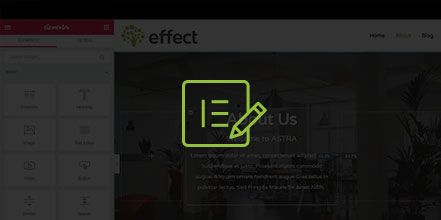 Elementor - Basic Editing in WordPress - Effect Web Agency